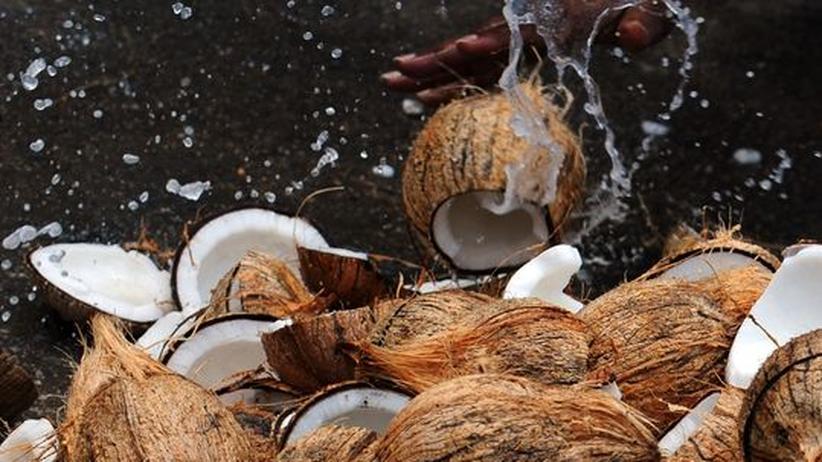 Kokosnuss: Die Frucht Gottes