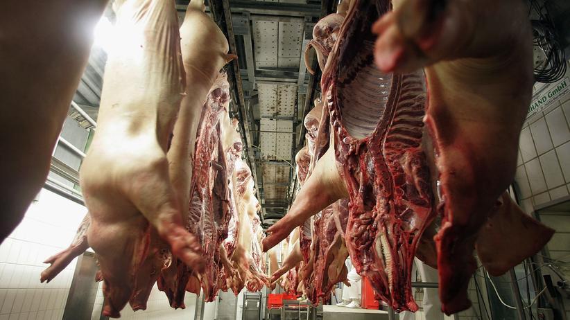 Fleischkonsum: Fünfzehntausend Schweine täglich