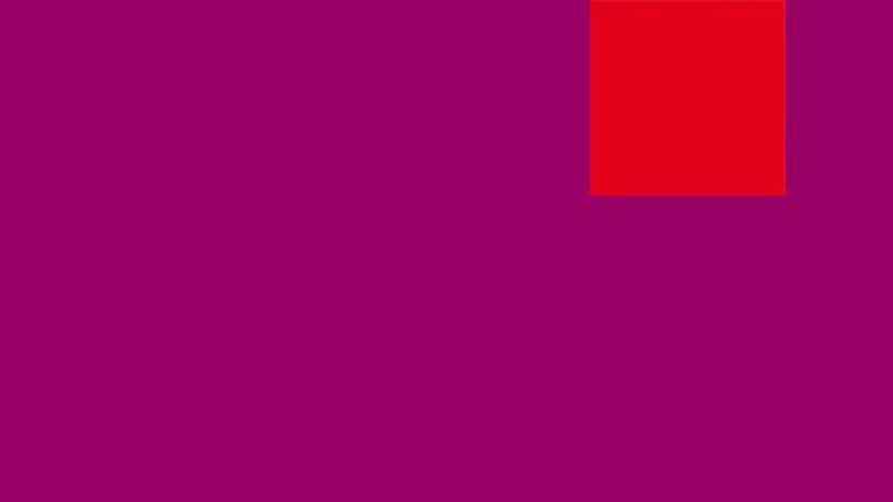 SPD: Purpur für alle