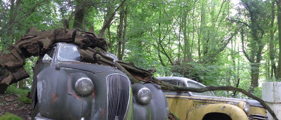 Rostende Oldtimer im Auto-Skulpturen-Park in Erkrath
