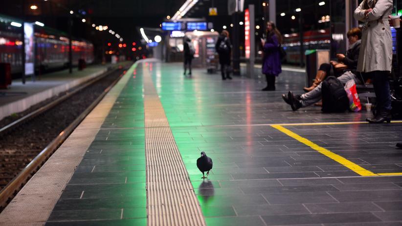 Deutsche Bahn: Wartende Passagiere und eine Taube am Hauptbahnhof in Frankfurt am Main