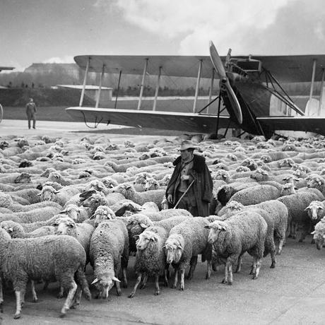 Luftfahrtgeschichte: Im Himmel über Berlin