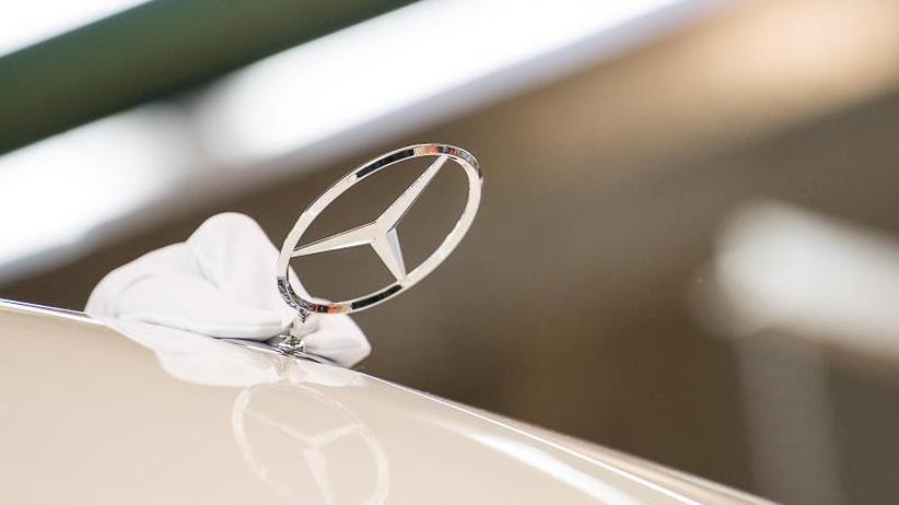 Abgas-Tierversuche: Auch Daimler zieht personelle Konsequenzen aus Affenstudie