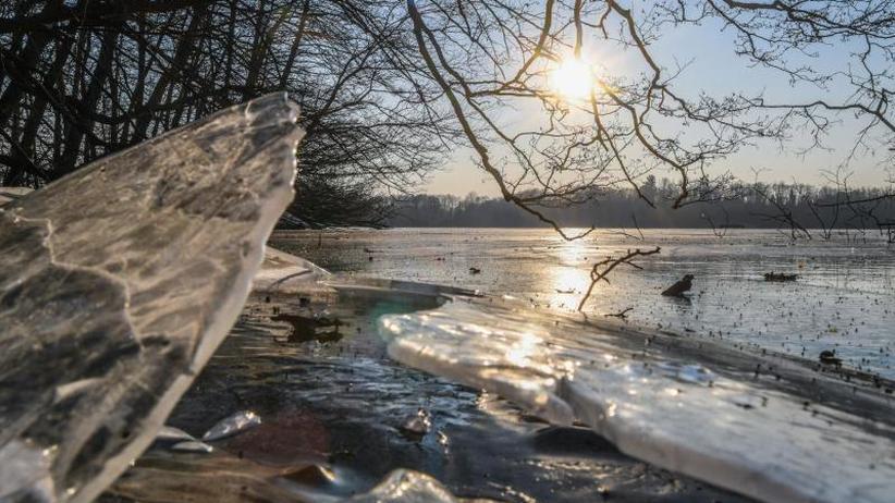 Nächtliche Plustemperaturen: Langsam kommt das Kälte-Ende in Sicht