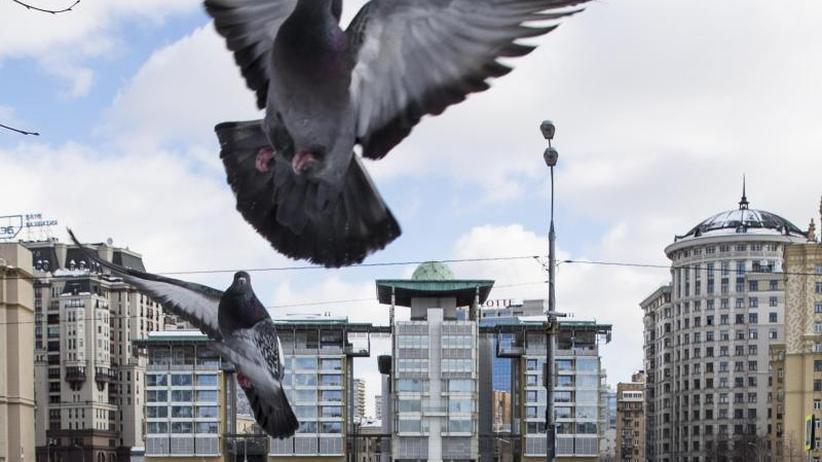 23 Diplomaten ausgewiesen: Moskau holt zum Schlag gegen London aus