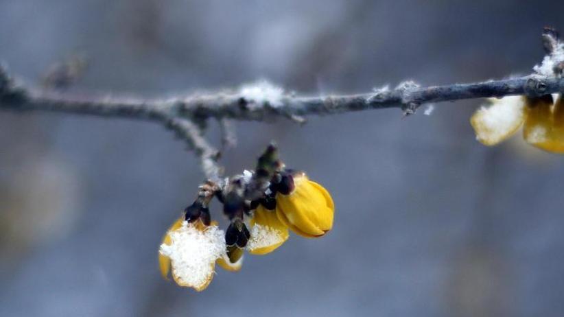 Unfälle mit Blechschäden: Frühling beginnt winterlich mit Glätte und Schneegestöber