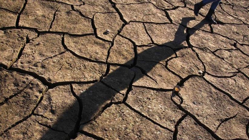 Dürre, Missernte, Sturmflut: Klimawandel könnte Millionen zum Umsiedeln zwingen