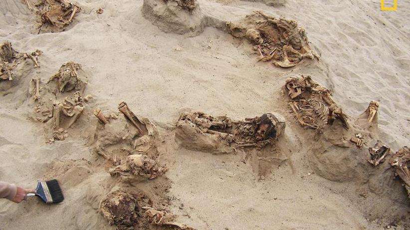Sensationsfund in Peru: Archäologen entdecken Massengrab mit geopferten Kindern