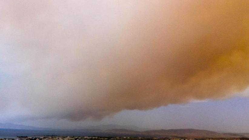 """Nationale Tragödie"": Feuerinferno nahe Athen - mindestens 74 Tote"