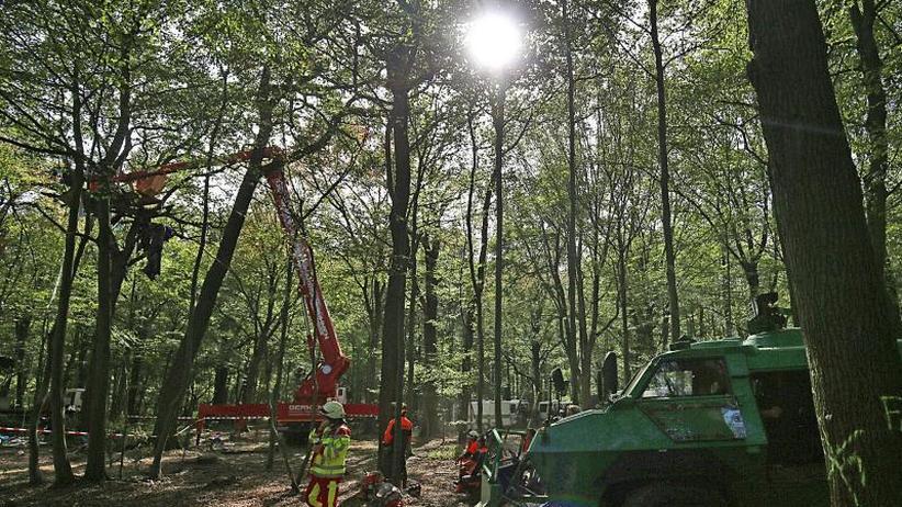 Protest gegen Braunkohle: Räumung im Hambacher Forst geht weiter