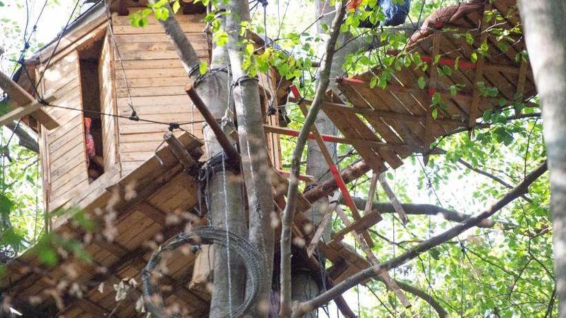 Räumungsaktion im Wald: Journalist bei Sturz im Hambacher Forst schwer verletzt
