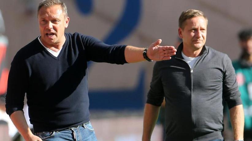 96-Krise: Nur keine Panik: Hannovers Manager Heldt mahnt zur Ruhe