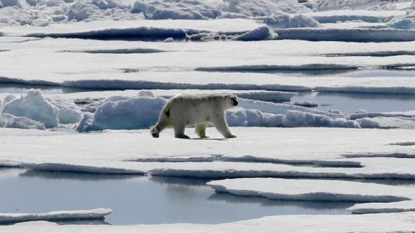 Extremwetter durch Klimawandel: Weltklimarat startet Beratungen zum 1,5-Grad-Ziel