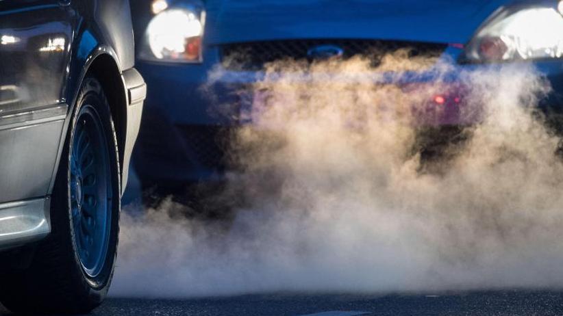 Studien zur Luftqualität: Verpestete Luft setzt vor allem den Kleinsten zu