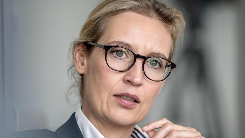 Bundestag verlangt Aufklärung: AfD-Politikerin Weidel wegen Parteispenden in Bedrängnis