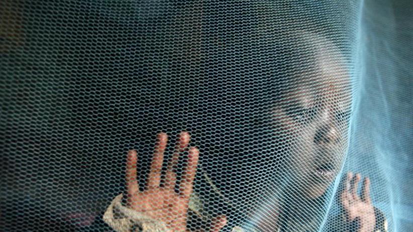 Erhöhung der Fallzahlen: Alle zwei Minuten stirbt ein Kleinkind an Malaria