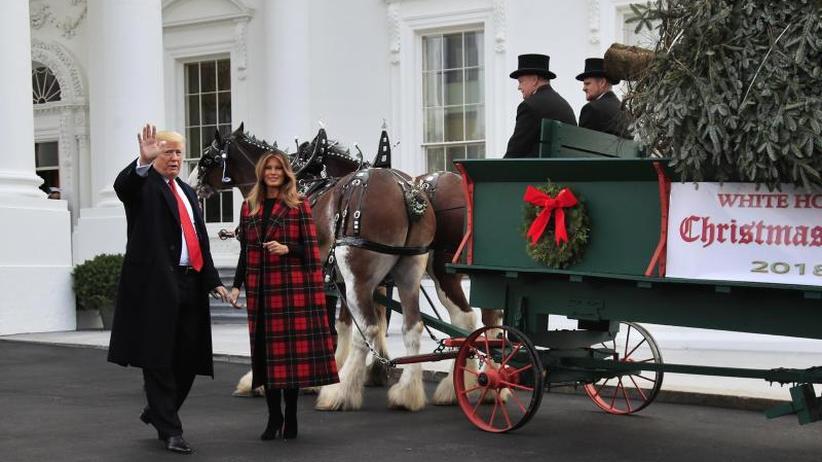 Tradition: Trump nimmt Weihnachtsbaum für das Weiße Haus in Empfang