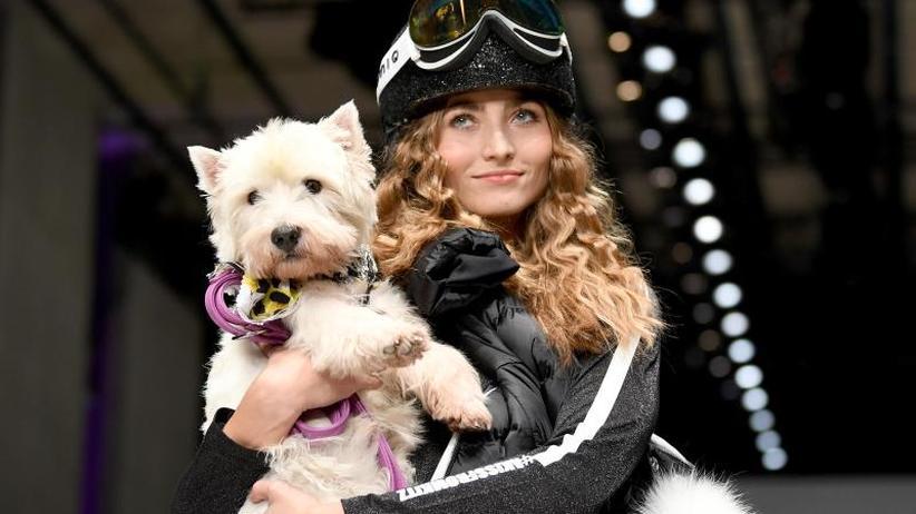 Neues vom Laufsteg: Berliner Modewoche bringt weißen Terrier groß raus