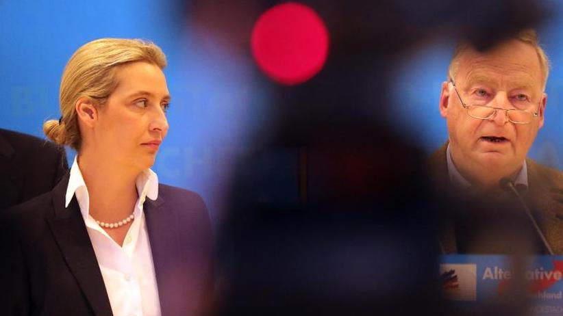 """Keine Festlegung auf Zeitraum: Verfassungsschutz braucht Zeit für den """"Prüffall AfD"""""""