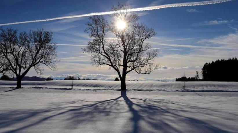 Luft aus Sibirien: Meteorologen erwarten mehrwöchige Kältewelle