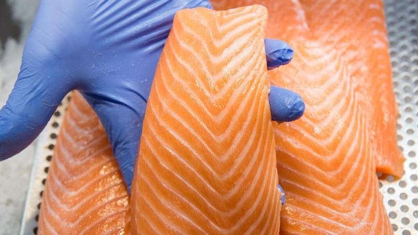 Lachsmarkt: Lachs-Produzenten bestätigen Razzien der EU-Kommission