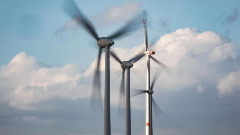 Modellrechnung: Windkraftanlagen töten im Sommer täglich Milliarden Insekten