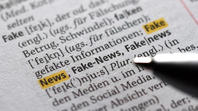 Digitalausschuss: Experten: Desinformationskampagnen im Netz überschätzt