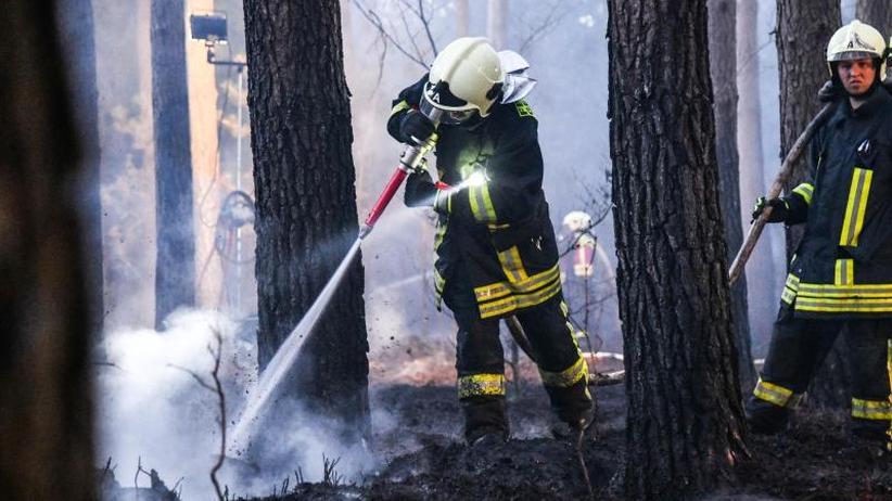 Warnstufe 5 in Brandenburg: In vielen Regionen herrscht akute Waldbrandgefahr