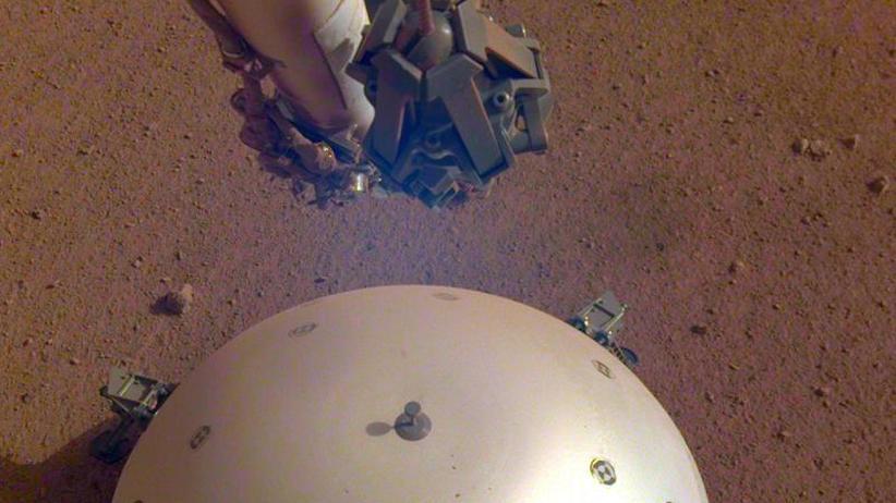 """Nasa-Sonde: """"InSight"""" hat wohl erstmals Mars-""""Beben"""" aufgezeichnet"""