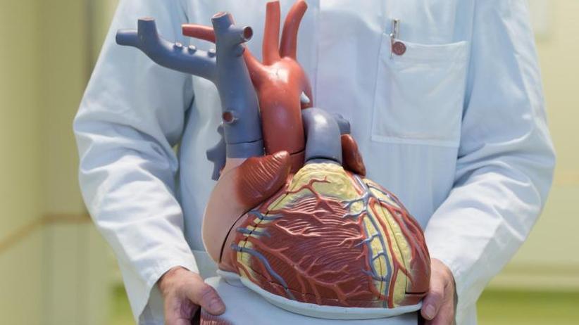 Kampf gegen Herztod: Kardiologen fordern mehr Unterstützung