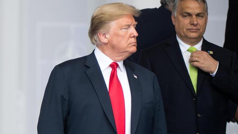 Orban im Weißen Haus: Warum Donald Trump und Viktor Orban einander umgarnen
