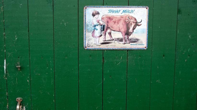 Landwirtschaft in Deutschland: Geldgrab Milch - Höfesterben geht ungebremst weiter