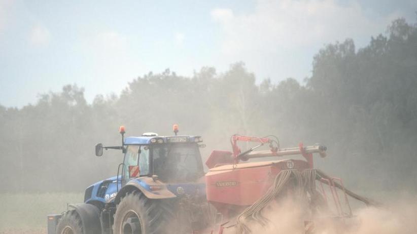 Affenhitze oder heiße Luft?: Die Sommer-Prognose im Faktencheck