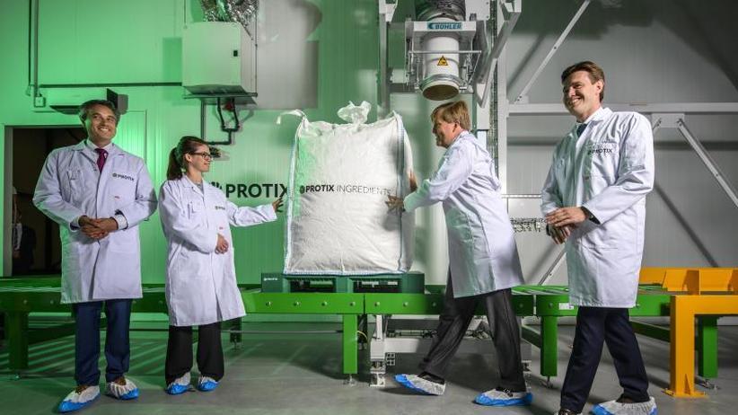 Nachhaltige Fleischproduktion: Niederlande erwarten Boom bei Insekten-Produktion