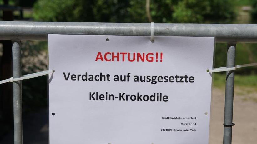Partnersuche kirchheim teck