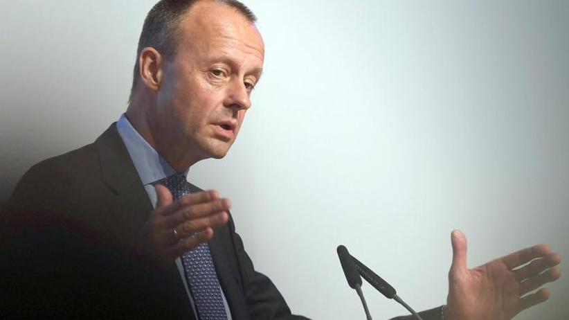 Ex-Unions-Fraktionschef: Merz: Verlieren Teile von Bundeswehr und Polizei an die AfD