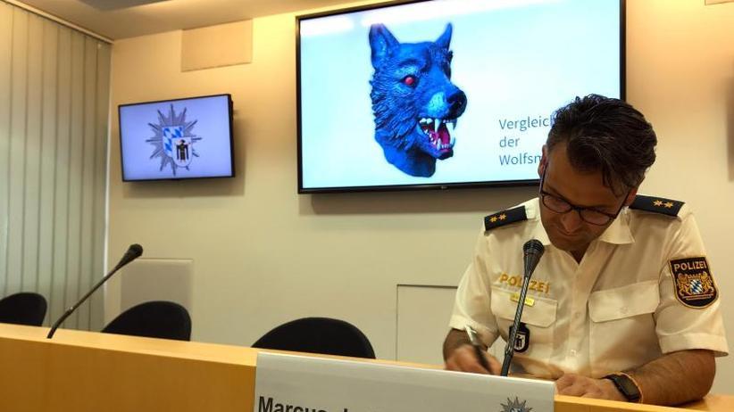 Behörden prüfen Vollzugsfehler: Vergewaltiger mit Wolfsmaske in Psychiatrie eingewiesen