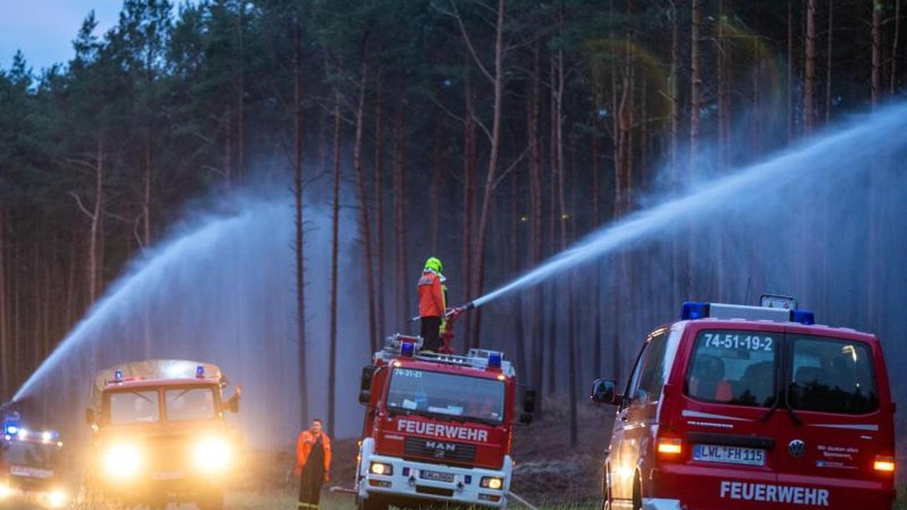 Disaster declared: forest fire in Mecklenburg-Western
