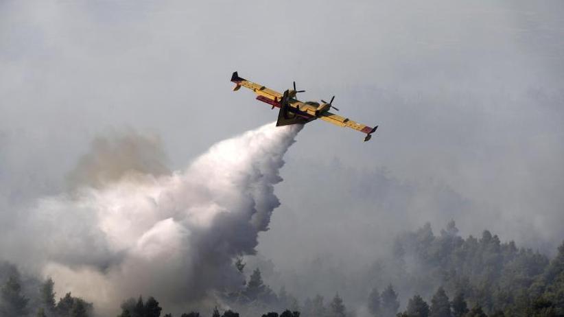 Feuerfront ist eingedämmt: Brände auf griechischer Insel Euböa teils unter Kontrolle