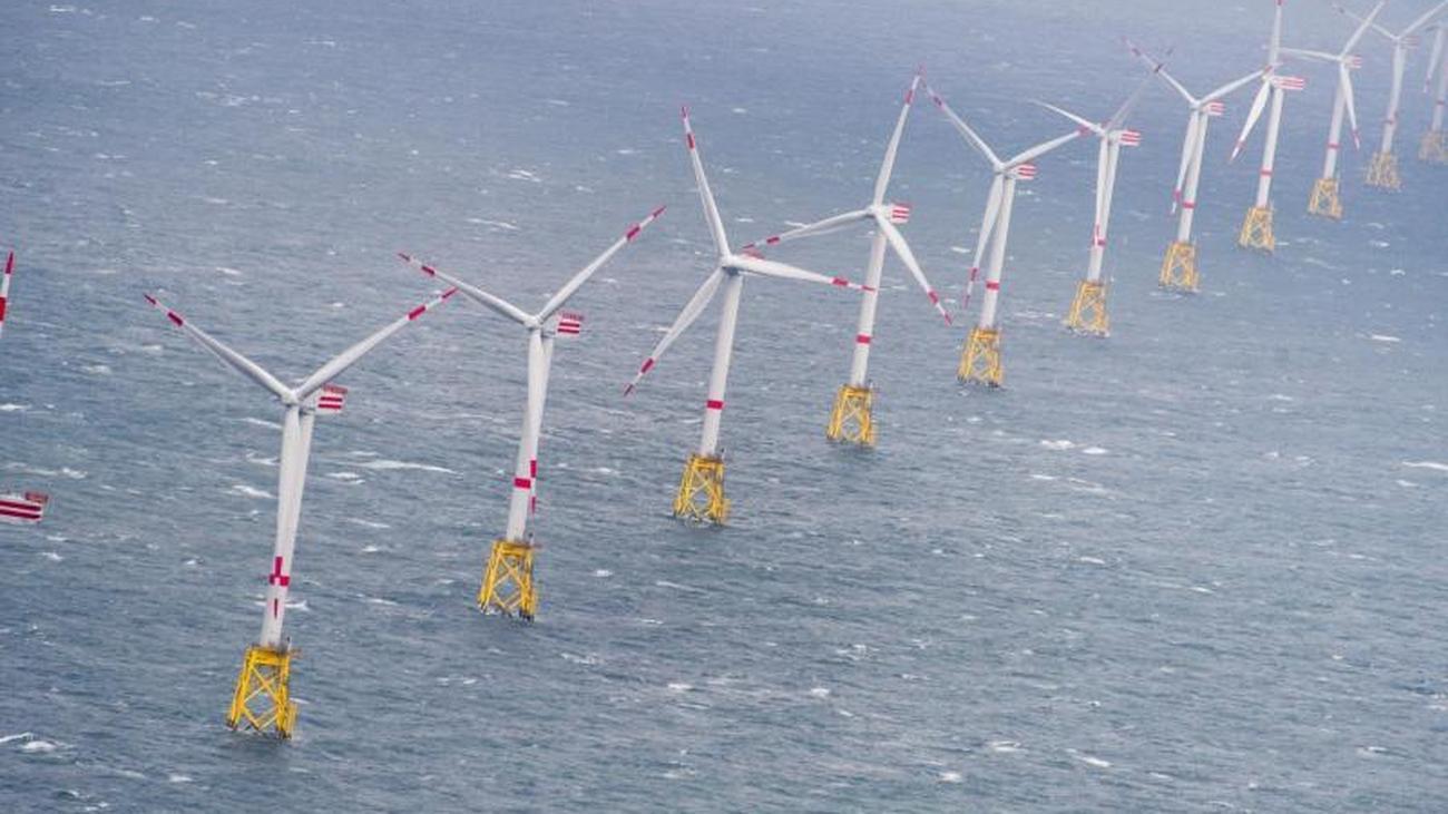 Ausbau der Windkraft: Windenergie: Nabu warnt Überlastung in Nord- und Ostsee