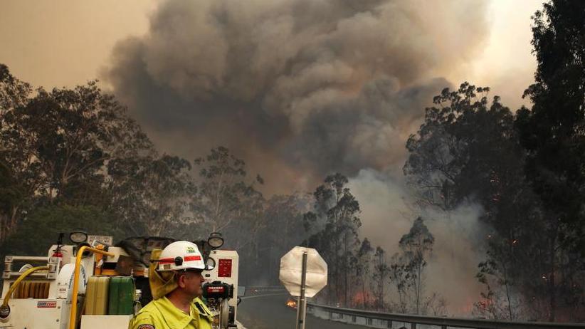 Zwei Festnahmen: Schon vier Tote: Buschbrände in Australien wüten weiter