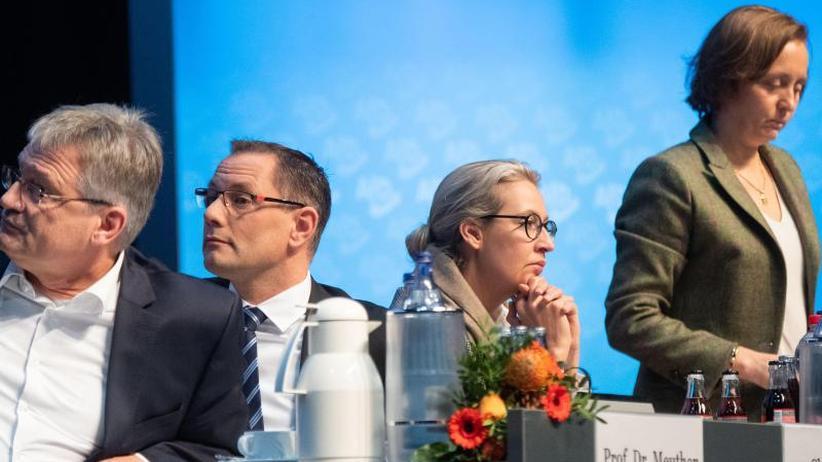Hintergrund: Der neue AfD-Bundesvorstand - jünger und etwas weiblicher