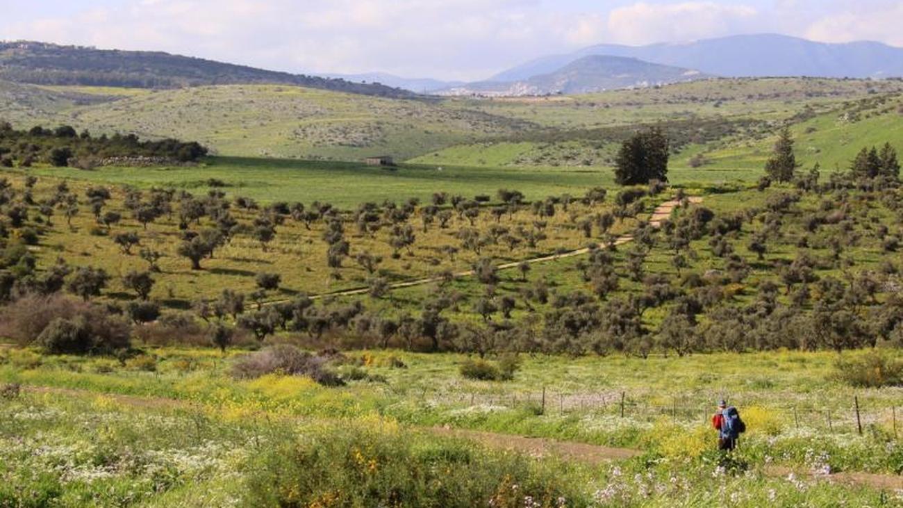 Jesus-Trail: Dem Herrn in Israel auf der Spur