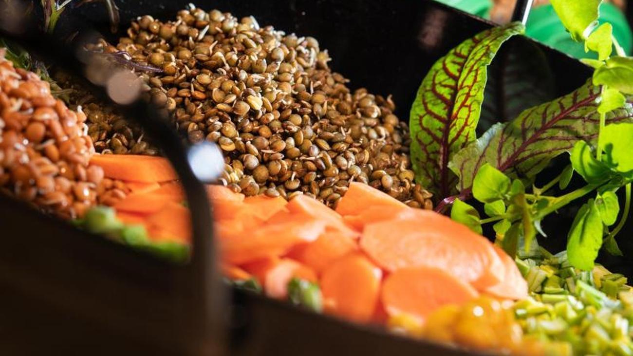 Tipp vom Profi-Koch: Linsen vor dem Kochen keimen lassen