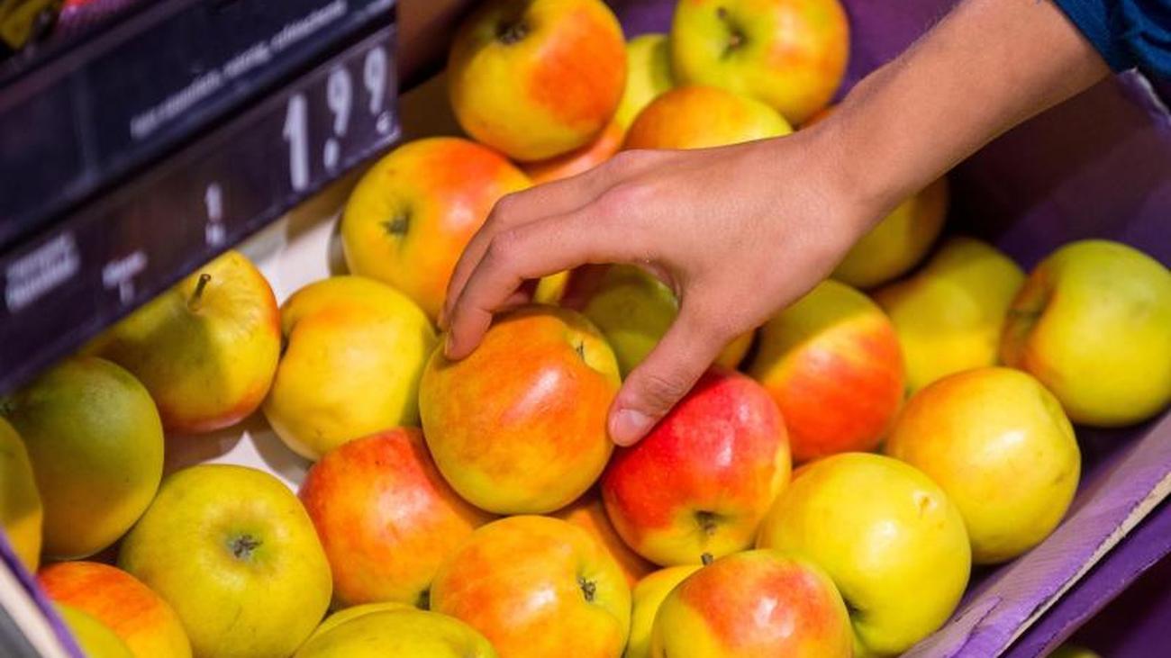 Reif und knackig: Diese Apfelsorten gibt es jetzt frisch