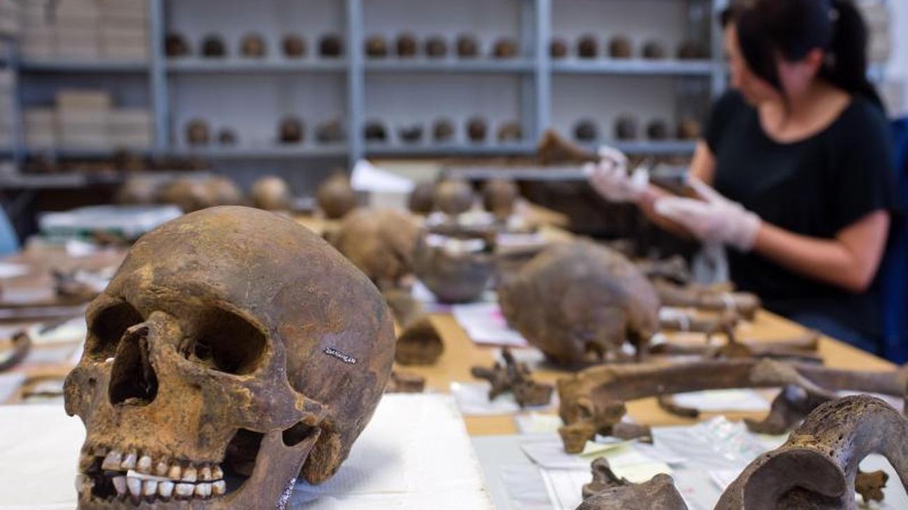 Archäologie News