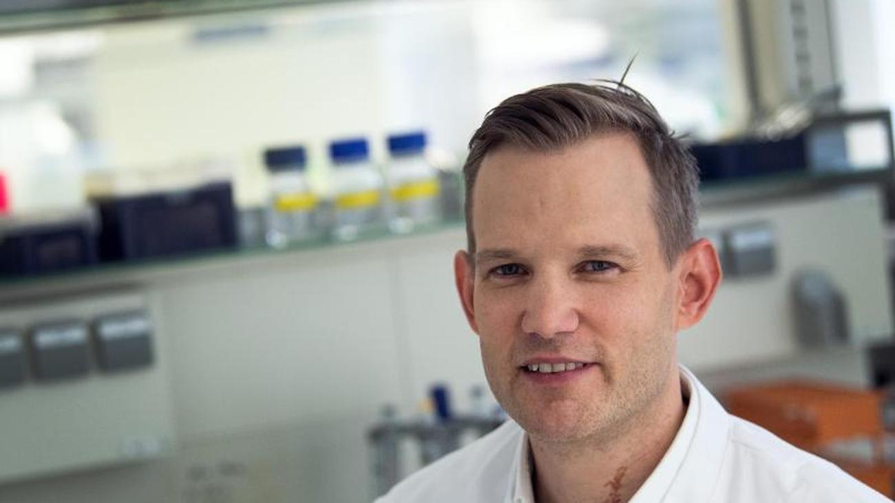 Virologe Streeck: Corona-Forschung müsste koordiniert werden