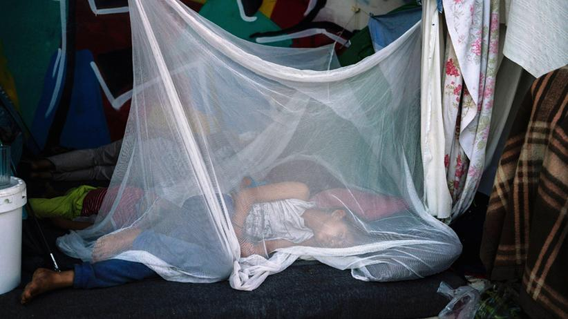 Migration: Ein Flüchtling schläft in Athen unter einem Moskitonetz.