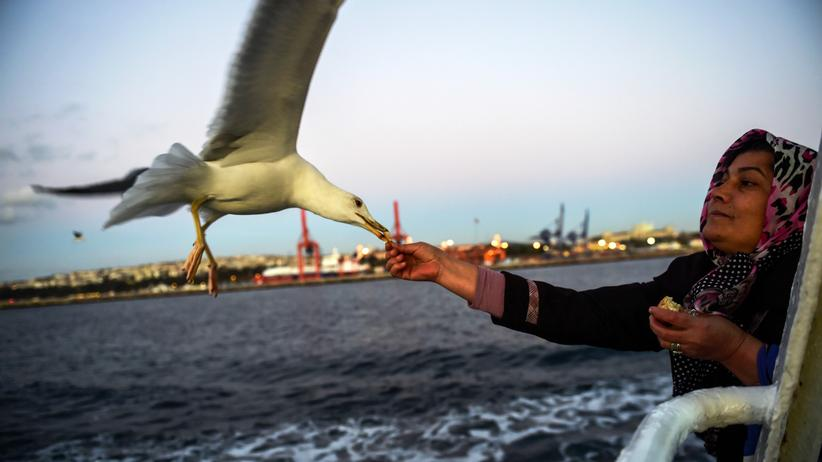 Europäische Union: Fähre über den Bosporus