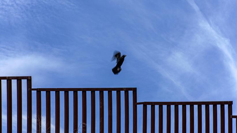 Grenze : Zaun statt Mauer: Die Grenze zu Mexiko ist schon jetzt gut gesichert, so wurde aus einem 100-Meilen-Streifen eine Hochsicherheitszone gemacht.